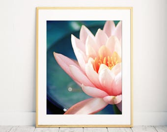 Waterlily Photo Print, Pink Flower Wall Art, Shabby Chic Art. Flower Photography, flower print, floral photo, botanical Art, 11x14 photo