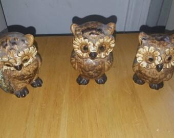 3 Schmidt owls