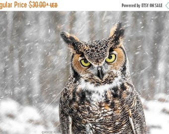 ON SALE Great Horned Owl Print, Winter Home Decor, Art Print, Bird in the Forest Wall Art, Nature Print, Bird Lover Art, Owl Decor
