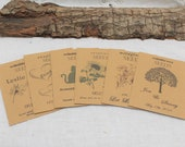 Wedding Favors. Seed Packets. Seed Favors. Wedding Seed Favors. Kraft Enevelopes. Wedding Ideas. Packet Favors. Wedding Favors Guest