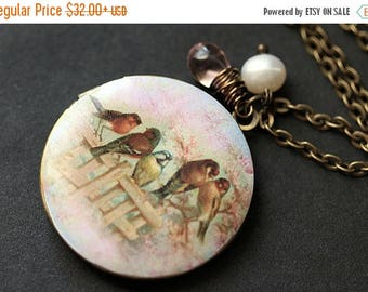 BACK to SCHOOL SALE Bird Family Necklace. Bird Locket Necklace. Summer Garden Locket. Bird Necklace. Bronze Necklace with Pink Teardrop and