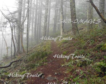 Fog on Eagles Rest Trail,  DIGITAL DOWNLOAD, forest decor, woodland style, hiking path forest wall art, Fine Art Photography by HikingTrails