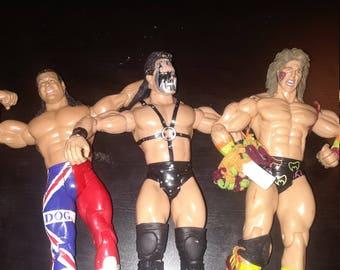Www action figure wrestlers