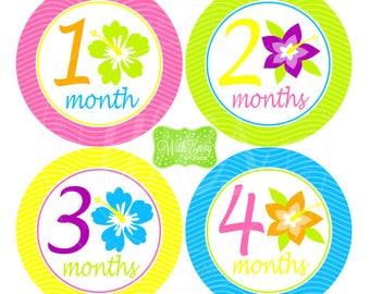Tropical Baby Monthly Stickers - Baby Bodysuit Stickers - Tropical Flower Monthly Baby Stickers - Baby Girl Monthly Stickers - 049