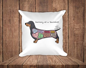 Anatomy of a Dachshund - Funny Dog Square Pillow