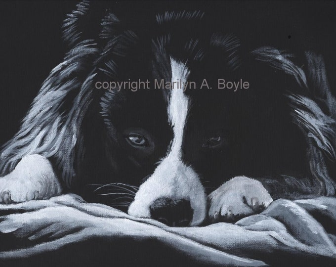 ORIGINAL ACRYLIC PAINTING Border Collie; wall art, 11 x 14 inch wrap around black canvas, limited palette, dog art,