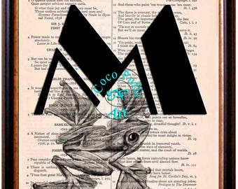 Alphabet M with Frog Art Beautifully Upcycled Vintage Dictionary Page Book Art Print, Reptile Art Print