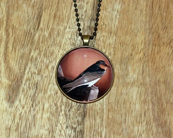 Pendant necklace featuring a photograph a Welcome Sparrow