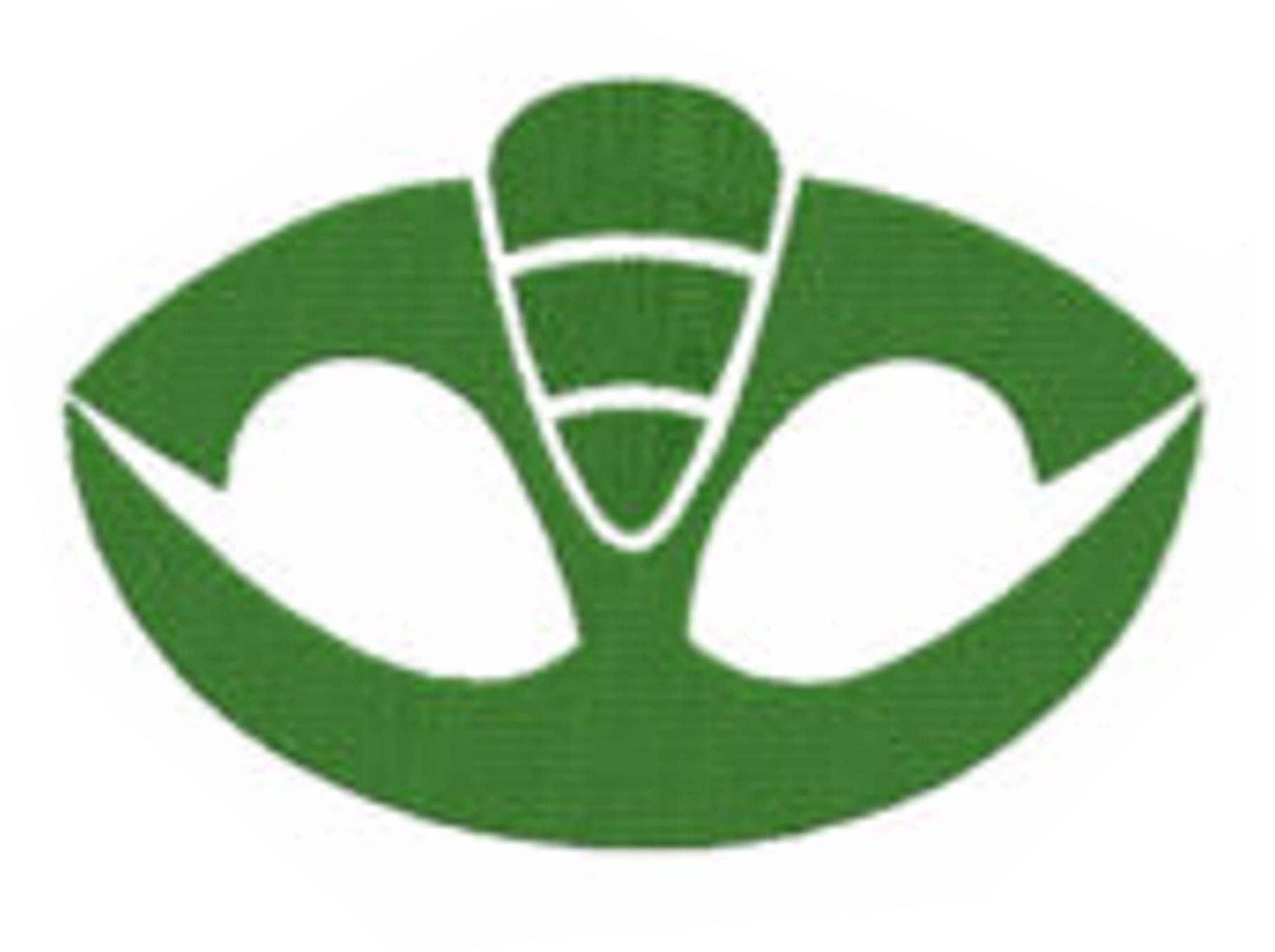 Gekko Pj Masks Symbol Cookie Cutter from KrysKut on Etsy ...