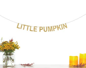 Little Pumpkin Banner, Birthday Party Decorations, Pumpkin Party, Baby Shower Banner, 1st Birthday, Fall Baby Shower, Pumpkin Decorations