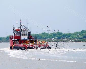 Lousiana Fishing Boat Photograph // Nautical Photography // Fishing Boat and Seagull Photograph