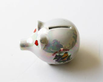 New Jersey travel souvenir piggy bank, iridescent glaze, state bird and flower, travel memorabilia