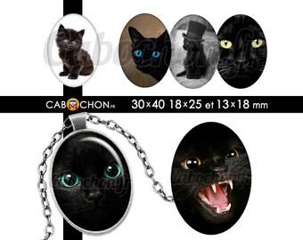 Chats Noirs • 45 Images Digitales OVALES 30x40 18x25 13x18 mm chat animal noir yeux pupilles mignon cute felin chapeau silhouette
