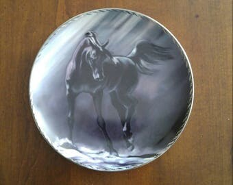 Bradford Exchange Collectible Plate Shadow Dancer from the Unbridled Mystery Series