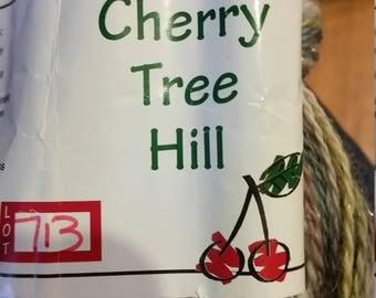 One skein  214 yards Cherry Tree Hill Yarn, Glitter Alpaca, Birches purple, green, cream and glitter