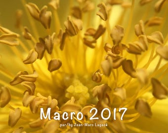 Macro 2017/2018 Calendar - A trip on the smaller side of the world