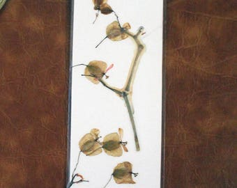 Pressed begonia bookmark