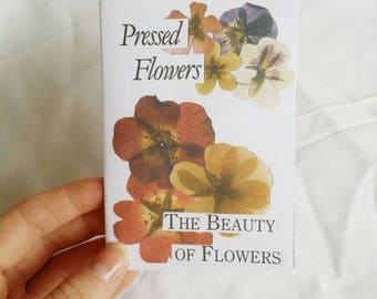 Art Zine // Pressed Flowers: The Beauty of Flowers Zine // Vintage Collage Art Journal Zine