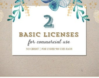 Two Basic Commercial Licenses Bundle for Commercial Use of Patterns, Clip arts, Graphic Design | Discount Package