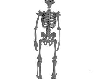 3D Puzzle, Dinosaur Toy, 3D Human Skeleton Puzzle, Recyclable PVC Homo Sapiens Puzzle Toy GREY, Eco-Friendly, Skeleton Toy, Human Body Toy