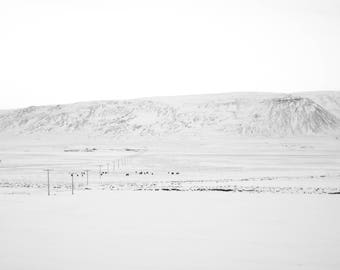 Iceland's Winter Landscape/ Home Decor/ Gift/ Travel /Print / Wall Art / Unique/ Adventure/ Wanderlust / Digital /Fine Art/ Europe/ Iceland
