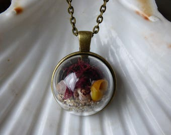 Irish beach terrarium necklace, beach terrarium, seaweed, sand and shells necklace, vintage style necklace