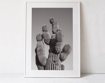 Printable Art Print, Cactus Photography, Instant Download Art, Cactus Poster-Cactus Print-Succulent Printable Wall Art-24x36 Succulent Print