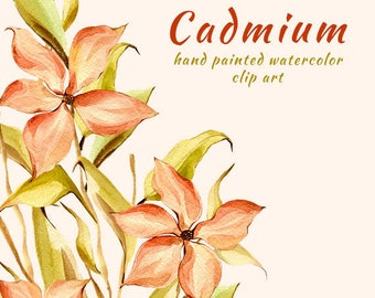 Hand Painted. Watercolour Flower Clipart. Cadmium