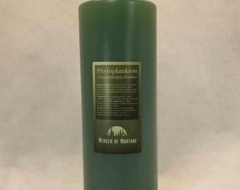 Live Phytoplankton - Nannochloropsis - 1 Liter (33.8oz) Bottle
