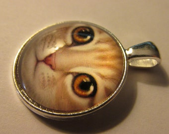 """Silver Tone Glass Dome Pendant of Doe-Eyed Striped Kitty Cat , 1"""""""
