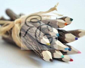 Tree Branch Pencils, Desktop Wallpaper 16X9, Artsy Wallpaper, Nature Wallpaper, HD Wallpaper, Digital Download, Instant Download