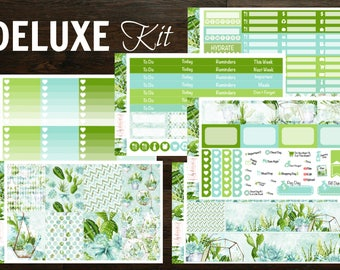 V ECLP/Rec. Succulents Collection Weekly Kit || 130+ Planner Stickers