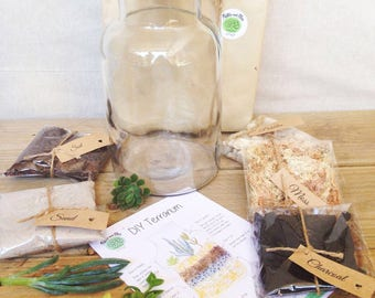 DIY Terrarium Kit, Large Cork Jar Succulent Terrarium, Glass and Cork Terrarium, Living Succulent Miniature Garden, DIY Terrarium Gift Green