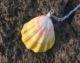 SUNRISE SHELL    Hawaiian Sunrise Shell Necklace     Yellow Sunrise Shell Necklace