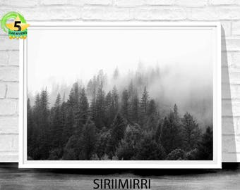 Forest Wall Art, Forest Photography, Nature Art, Misty Forest, Modern art, Digital Download, Black and White, Forest Art Print, Foggy Forest