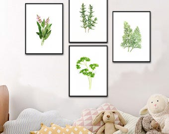 Set of 4 Herb watercolor painting prints Dill, Rosemary, Parsley, Sage paintings, botanical prints green home decor art print, kitchen decor
