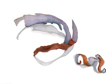 Curled Bark Watercolour Print - A4/A5