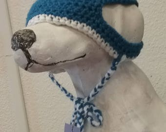 Pet Winter Beanies, photography, hat, dogs and cats