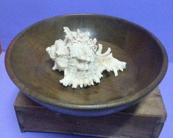 Made in Australia Wooden Bowl / Retro Olive Green Wooden Bowl