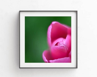 Wall pictures, Printable photography, Wall decor living room, Abstract photography, Digital download art, Commercial use, Green pink tulip