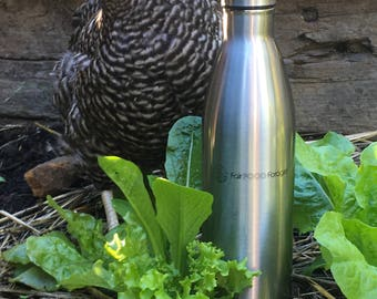Insulated Stainless Steel Drink Bottle