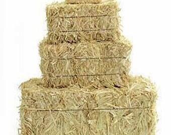 Mini Hay Bales - 5 Inch