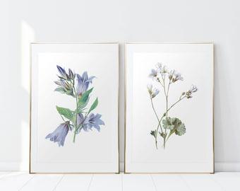 Set of 2 prints/ Vintage Flowers/ Flower Print/ Vintage Flower Wall Art/ Printable Art/ Botanical Print/ Bathroom Prints/ Bedroom Prints