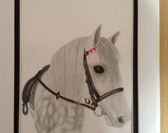 Commission personalised animal drawing