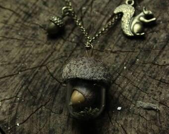 Real acorn terrarium necklace