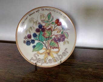 The Country Diary of an Edwardian Lady Limited Edition Plate 'September' Bradex Davenport Excellent condition
