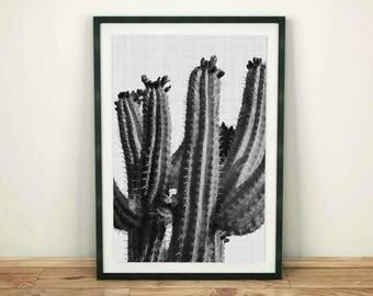Cactus Print, Botanical Print, Plant Print, Large Cactus Poster, Cactus Wall Art,  Desert Wall Decor, Modern Minimalist, Cactus Printable