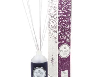 Gnana woodsy Fragrance Diffuser