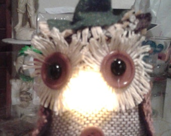 Mr Light up Wise Owl