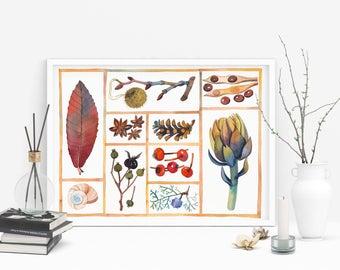Nature Gifts, Botanical Poster, Nature Art, Botanical Art Print, Plants Print, Nature Wall Art, Nature Print, Plants Art, Botanical Wall Art